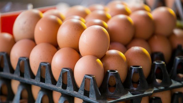 ไข่ไก่ไม่ได้แพงอย่างที่คิด